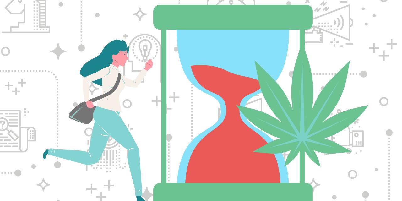 cannabis marketing strategy